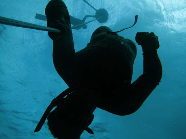 free diving mexique